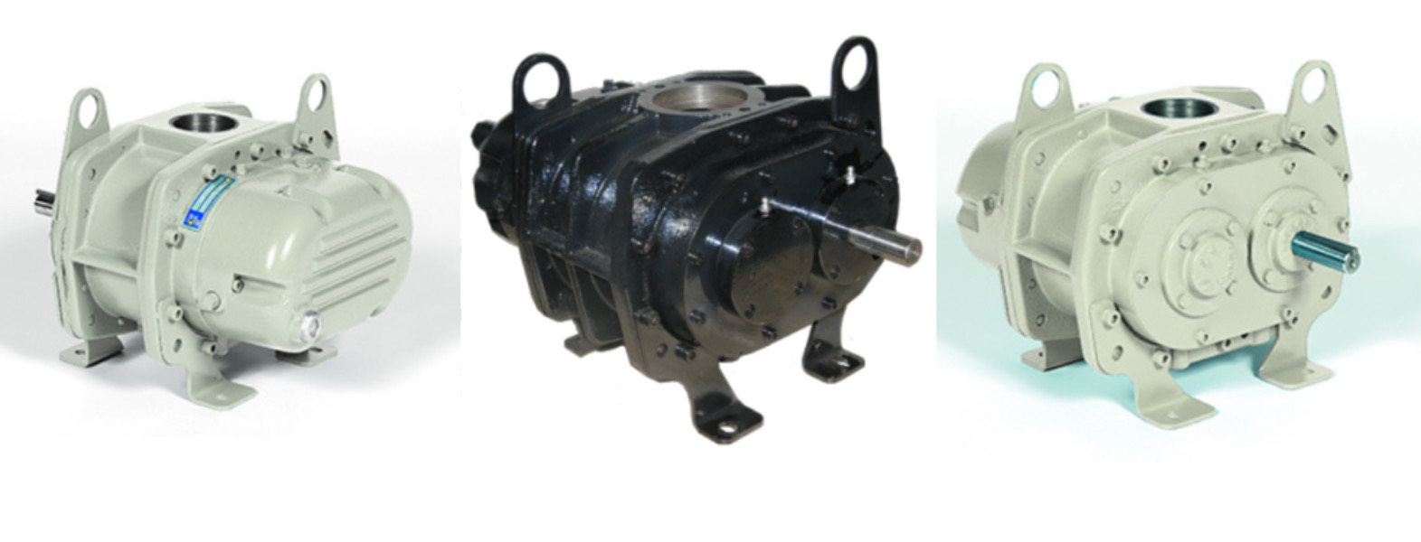 S2H Series Positive Displacement Blowers